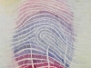 Fingerprint Sophie